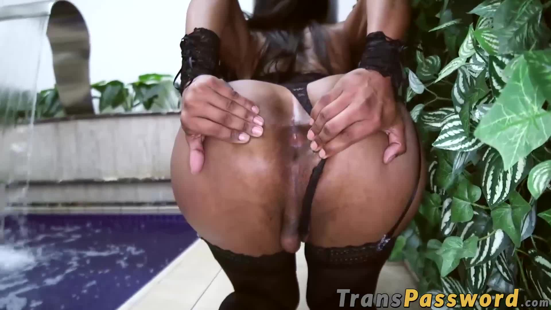 Latina TS gets her big ass stuffed with fat dick